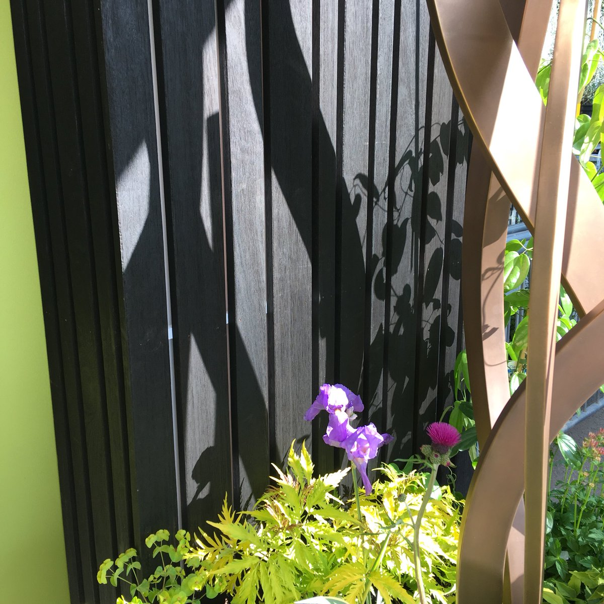 Close up of charred cladding next to garden sculpture used in flower show at RHS Chelsea