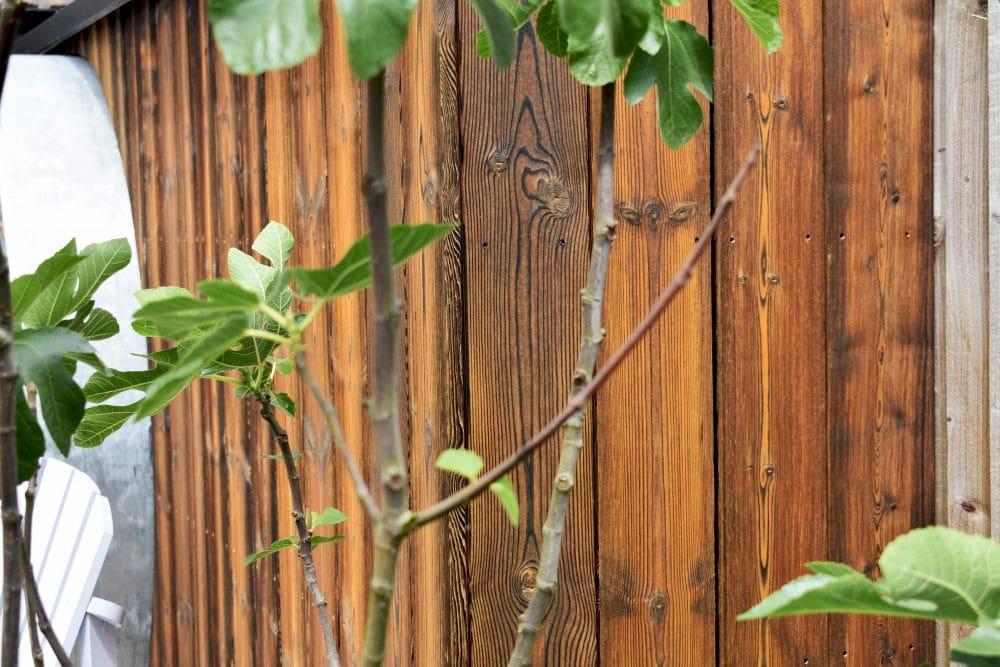 close up charred kebony kenchiku texture fence